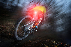Mountain biker speeding at night on forest track, Bavaria, Germany