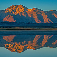 Laurel Mountain and the Eastern Sierra Nevada crest reflect in Big Alkali Lake in Long Valley near Mammoth Lakes, California.