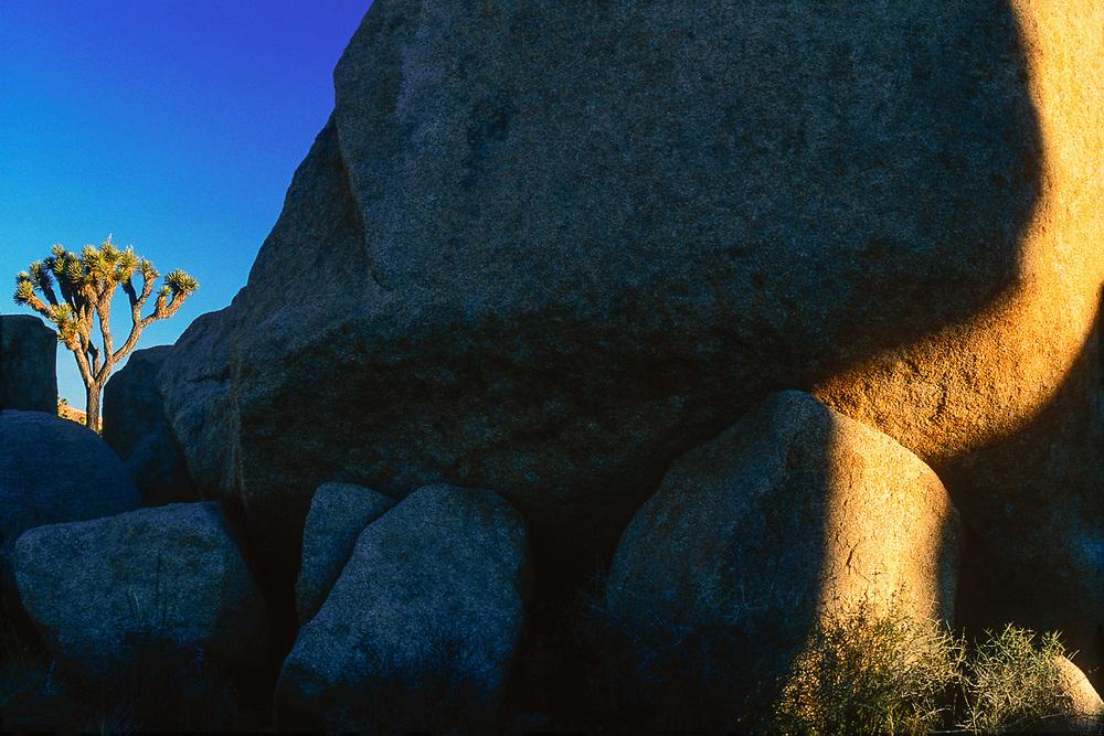 Lost Horse Valley, morning shadow, Joshua Tree National Park, California, USA