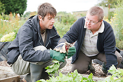 Man with learning disability and Day Service Officer looking at beetroot on allotment