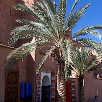 Africa, Morocco, Ouarzazate. Berber Carpets of Ourzazate.