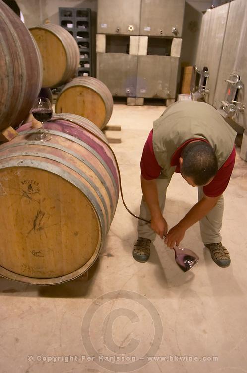 Oak barrel aging and fermentation cellar. Domaine Gauby, Calces, roussillon, France
