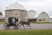 """Amish Horse & Buggy, Menno Yoder """"Brown Swiss Dairy"""" 12-Sided Concrete Barn, Road, Shipshewana, Indiana, Rain, Round Barn, Black Horse and Cart, Carriage, Trot"""