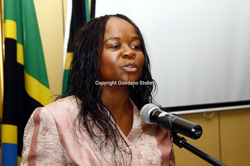 """PRETORIA - 3 December 2010 - Newly appointed South African Deputy Health Minister Dr. Gwendoline """"Gwen"""" Malegwale Ramokgopa addresses delegates at the Southern African Network of Nurses and Midwives -- APP/Allied Picture Press"""