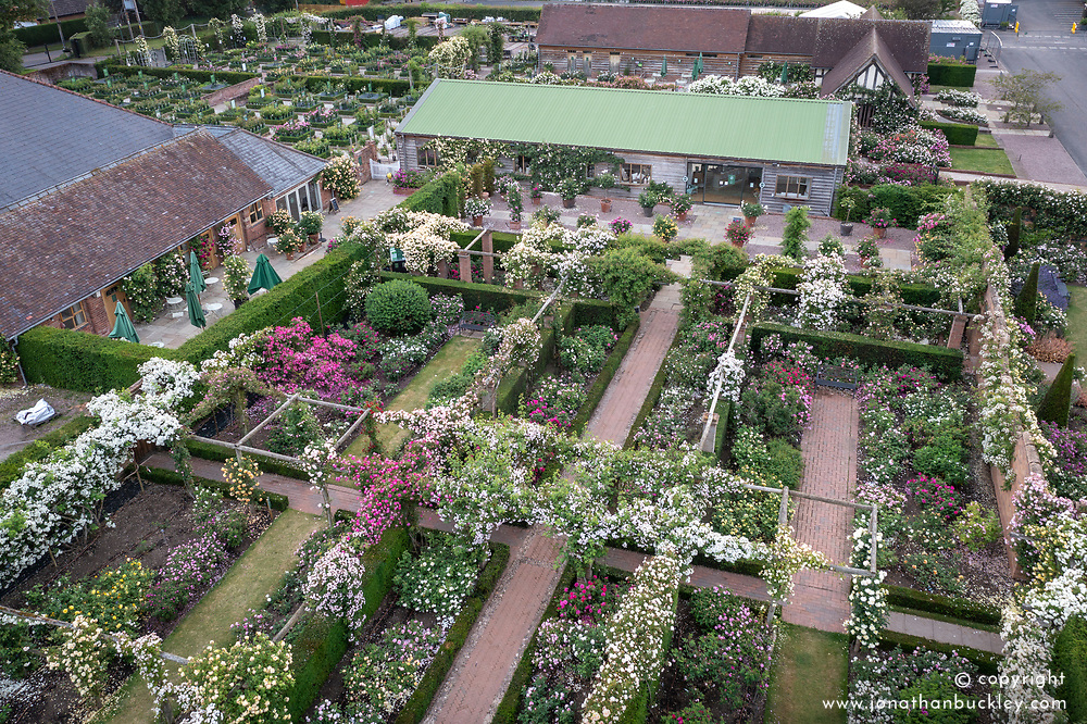 Aerial view of The  Long Garden and Plant Centre at The David Austin Rose Gardens