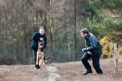 Sussex Police dog team