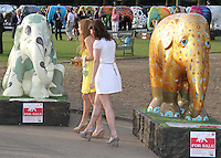 Princess Beatrice; Princess Eugenie Elephant Parade and Auction held at the Royal Hospital Gardens, Chelsea, London, UK, 30 June 2010:  For piQtured Sales contact: Ian@Piqtured.com +44(0)791 626 2580 (Picture by Richard Goldschmidt/Piqtured)