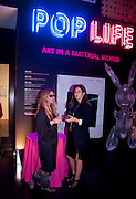 SULE ARINC; BERNA TUGLULAR, Pop Life in a Material World. Tate Modern. London. 29 September 2009.