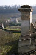 Vineyard of Chateau Ausone, other house in backgound. Saint Emilion, Bordeax, France