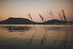 THEMENBILD - am Faakersee bei Sonnenuntergang, aufgenommen am 20. Juni 2018 in Faak am See, Österreich // Reeds in the Faakersee at sunset, Faak am See, Austria on 2018/06/20. EXPA Pictures © 2018, PhotoCredit: EXPA/ JFK