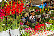 A Zapotec woman selling fresh cut flowers at the Sunday market in Tlacolula de Matamoros, Mexico. The regional street market draws thousands of sellers and shoppers from throughout the Valles Centrales de Oaxaca.