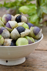 Tomatillo in a bowl - Physalis philadelphica