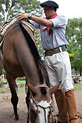 A gaucho / cowboy saddles up his horse before a horse skills competition, Lujan, Argentina.