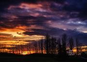 Clark's Elioak Farm Sunset in Ellicott City, Maryland.