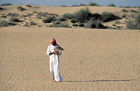 Emirats Arabe Unis, Emirat de Dubai, Chasse a l'aigle // United Arab Emirates, Dubai Emirate,  Eagle hunting