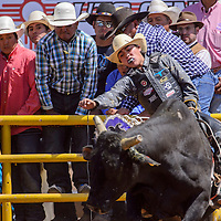 090514       Cable Hoover<br /> <br /> Ramon Curley holds on for the first qualifying ride of the day during the Navajo Nation Fair Rodeo in Window Rock Saturday.