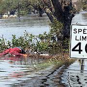 NEW ORLEANS, LA - September 4, 2005:  A mans body floats on Airline Way on Sept, 4, 2005 in New Orleans following the destruction caused by Hurricane Katrina. . (Photo by Todd Bigelow/Aurora)