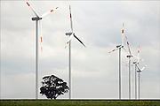 Duitsland, Jackerath, 11-8-2010Windmolens van RWE, gemaakt door Vestas, staan in het landschap met een boom ertussen. Foto: Flip Franssen/Hollandse Hoogte