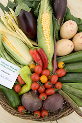 Prize winning collection of vegetables,
