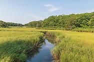 Marsh, New Suffolk, NY
