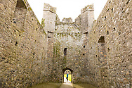The ruins of the 14th century Carlingford Friary, Carlingford, Ireland