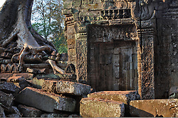 Ancient door and root in early morning light at Bayon Temple