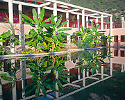 Reflection of banana plants and geometric architecture in a hotel, Oludeniz, Turkey