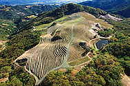 A hilltop scoured bare and terraced for wine grapes above Napa Valley, CA.