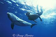 JoJo, a wild sociable bottlenose dolphin, Tursiops truncatus, or ambassador dolphin, swims with friend and dolphin warden Dean Bernal, Providenciales ( Provo ), Turks and Caicos Islands ( Western Atlantic Ocean ) MR 126