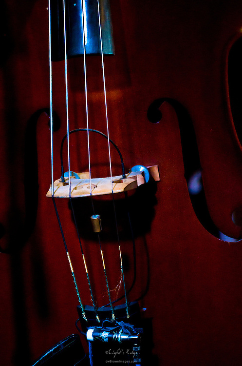 Tim Celfo's upright bass during Mason Porter's performance at Appel Farm's Festival Happy Hour held at Fergie's Pub in Philadelphia, PA.