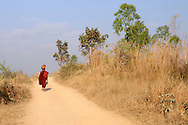 Burma/Myanmar, Shan Hills. Monk walking on the road and protecting himself against the sun.