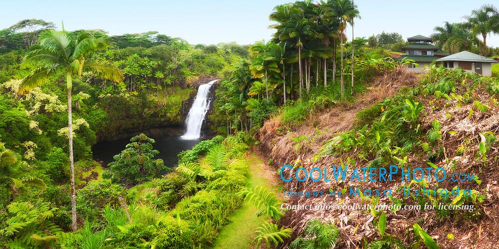 Kulaniapia Falls, tropical rainforest jungle, Hilo, Big Island, Hawaii, USA