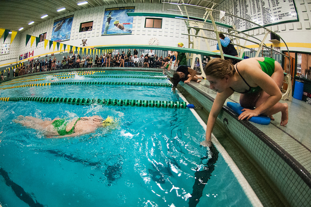 The swimming and diving meet between the Maine Blackbears and the Vermont Catamounts at Frank D. Forbush Natatorium on Saturday afternoon Novemeber 7, 2015 in Burlington, Vermont.