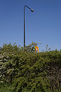A triangular warning sign for Double Bend seen over the hedgerow of a car park in Nailsea, on 21st April 2019, in Nailsea, North Somerset, England