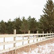 20181206 Tree Farm Location