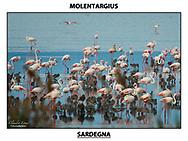 Foto: Claudio Lorai Meli- Fotostudiolabor®-2015 panorami di Fotografie di Cagliari, panorami della città Cagliari, panorami città Foto Landscapes