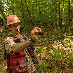 Tyler Pelland, a forester with LandVest, measures a forest in East Haven, Vermont.