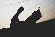 November 3, 2018: Breeders' Cup Horse Racing World Championships. Jockey and horse shadow.