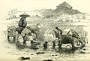 Planting out Rice from the book ' Rambles in Japan : the land of the rising sun ' by Tristram, H. B. (Henry Baker), 1822-1906. Publication date 1895. Publisher New York : Revell
