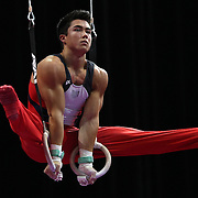 Sean Melton, Colorado Springs, Colorado, in action on the Still Rings during the Senior Men Competition at The 2013 P&G Gymnastics Championships, USA Gymnastics' National Championships at the XL, Centre, Hartford, Connecticut, USA. 16th August 2013. Photo Tim Clayton