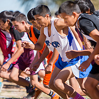 110213       Cable Hoover<br /> <br /> Hopi Bruin Anfernee Howard, center, and other racers sprint from the starting line during the Arizona sectional cross country meet in Holbrook Saturday.
