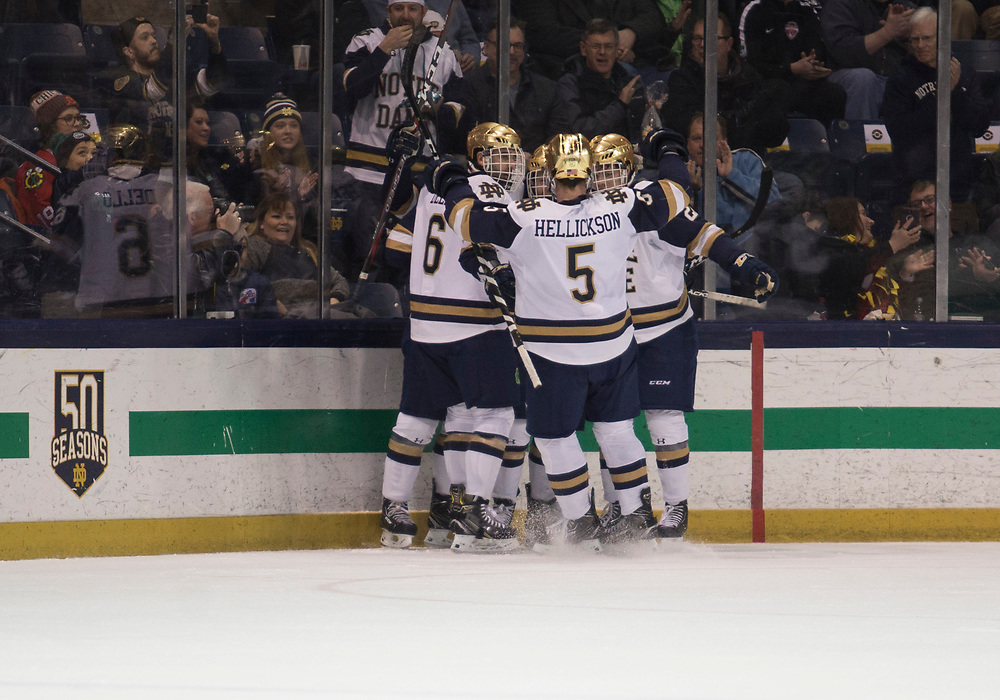 January 25, 2019:  Notre Dame players celebrate goal during NCAA Hockey game action between the Michigan State Spartans and the Notre Dame Fighting Irish at Compton Family Ice Arena in South Bend, Indiana.  Notre Dame defeated Michigan State 6-3.  John Mersits/CSM