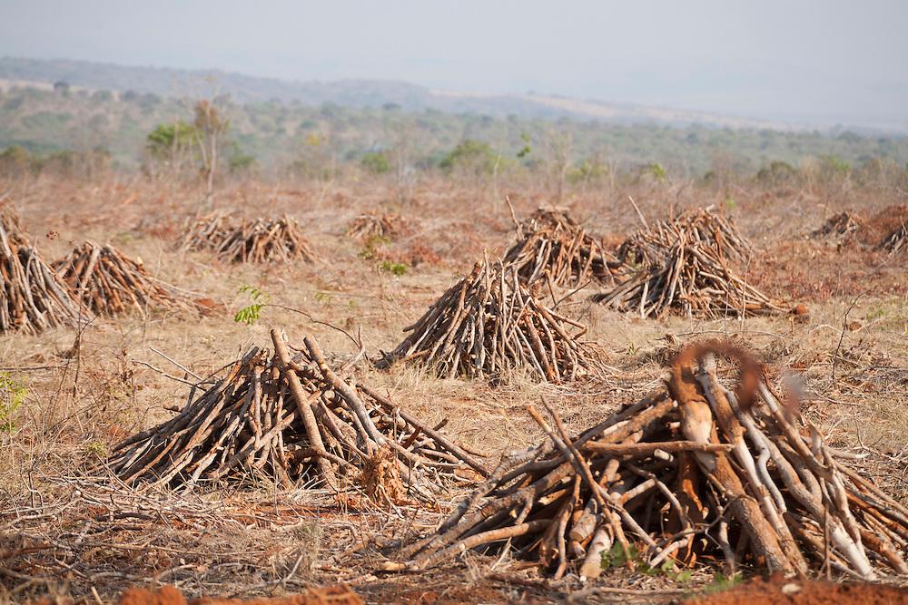 Corinto_MG, Brasil...Fogueiras para queimada em terreno em Corinto, Minas Gerais...Bonfires for to burn the ground in Corinto, Minas Gerais...Foto: LEO DRUMOND / NITRO
