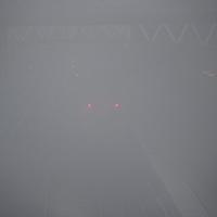Foggy Perth