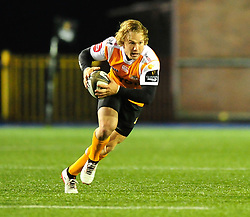 Cheetahs' Fred Zeilinga<br /> <br /> Photographer Mike Jones/Replay Images<br /> <br /> Guinness PRO14 Round 14 - Cardiff Blues v Cheetahs - Saturday 10th February 2018 - Cardiff Arms Park - Cardiff<br /> <br /> World Copyright © Replay Images . All rights reserved. info@replayimages.co.uk - http://replayimages.co.uk