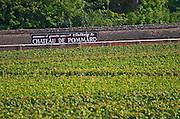 Vineyard. Chateau de Pommard sign. Pommard, Cote de Beaune, d'Or, Burgundy, France