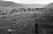 Among headstones and graves, two local children play in the unkempt cemetery attached to the Blaenau Baptist Church in the south Wales town of Abertillery (Welsh: Abertyleri). Along with their pet Labrador dog who enjoys joining in on the fun, the children are playing safely in the open-air of this Welsh community. Rows of terraced Victorian homes line the distant end of this ground and then clinging to far hill side and beyond. Its population rose steeply during the period of (now defunct) mining development in South Wales, being 10,846 in 1891 and 21,945 ten years later. Lying in the mountainous mining district of the former counties of Monmouthshire and Glamorganshire, in the valley of the Ebbw Fach. In 2003, Abertillery was found to have the cheapest house prices in the United Kingdom, according to a survey by the Halifax Building Society.