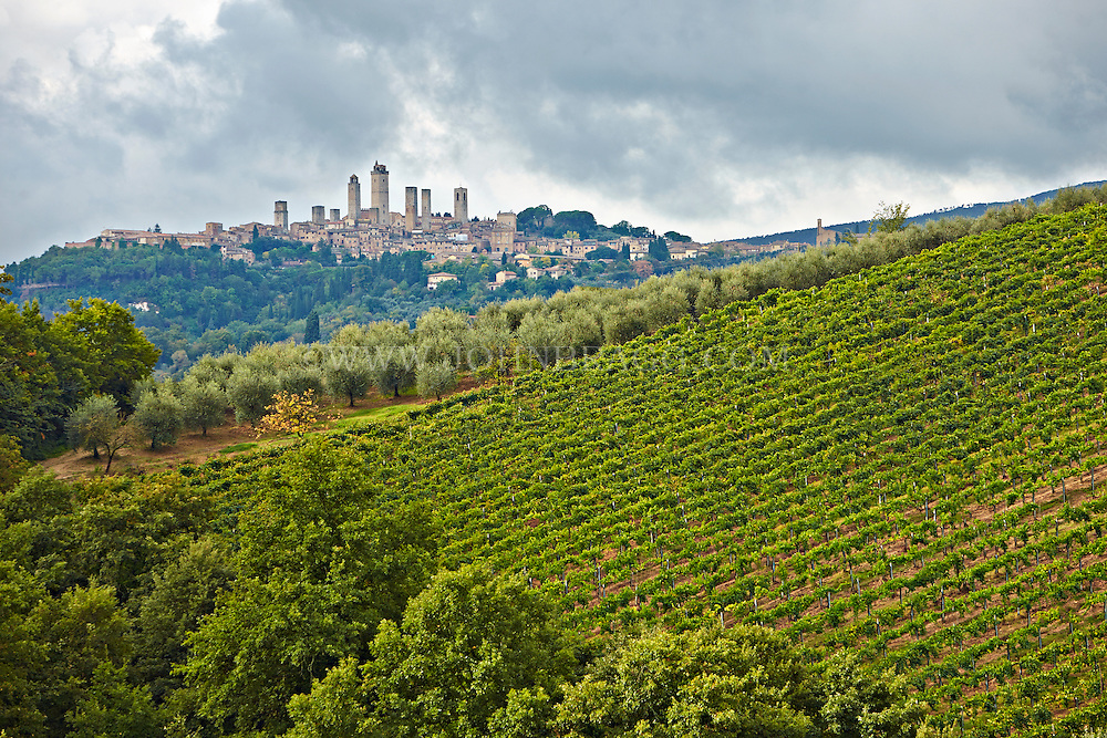A distant view of the medieval, walled city of San Gimignano in Tuscany, Italy.