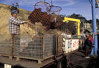 Unloading sea urchins from boat at Point Arena, California
