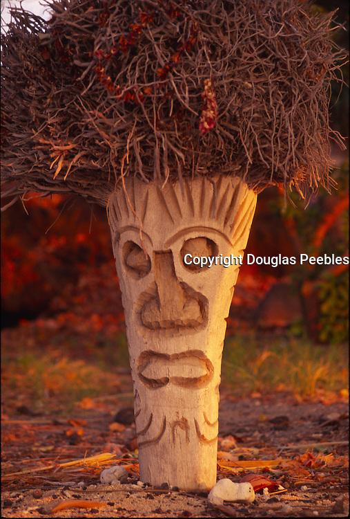 Coconut palm carved into tiki, Hawaii<br />